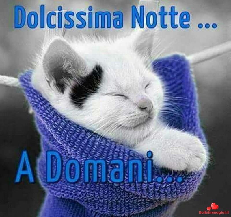Buona Notte E Sogni D Oro Pagina 32