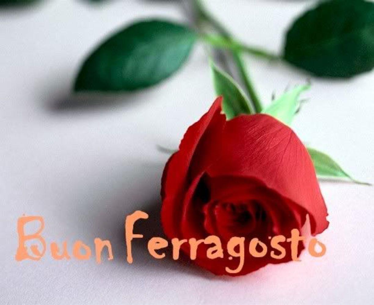 Buon-Ferragosto-Immagini-per-Whatsapp-35