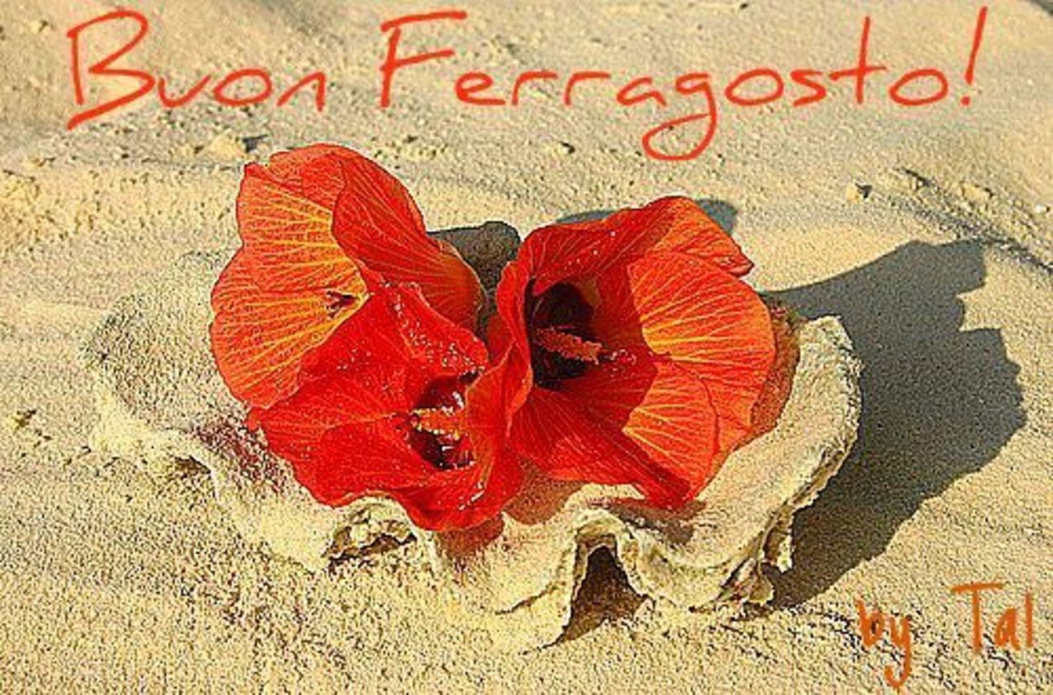 Buon-Ferragosto-Immagini-per-Whatsapp-36