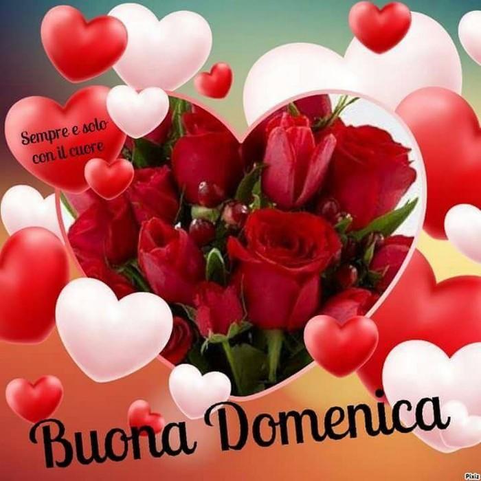 Whatsapp per Buongiorno Domenica 00078