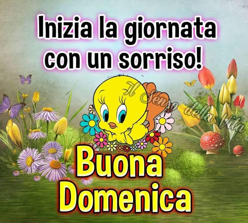 foto belle frasi facebook whatsapp buona domenica scarica gratis carine 37