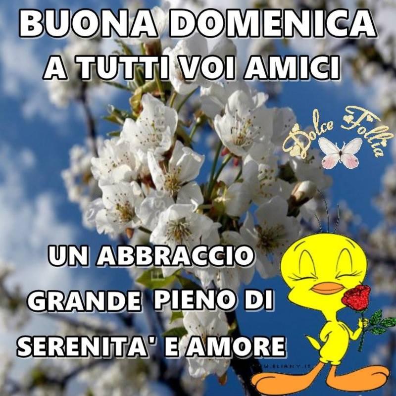foto belle frasi facebook whatsapp buona domenica scarica gratis carine 39