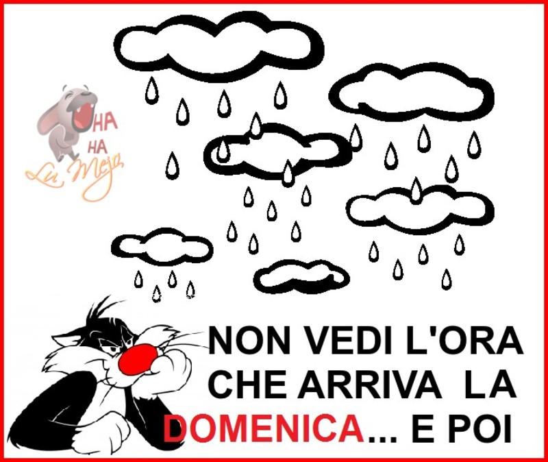 foto belle frasi facebook whatsapp buona domenica scarica gratis carine 49
