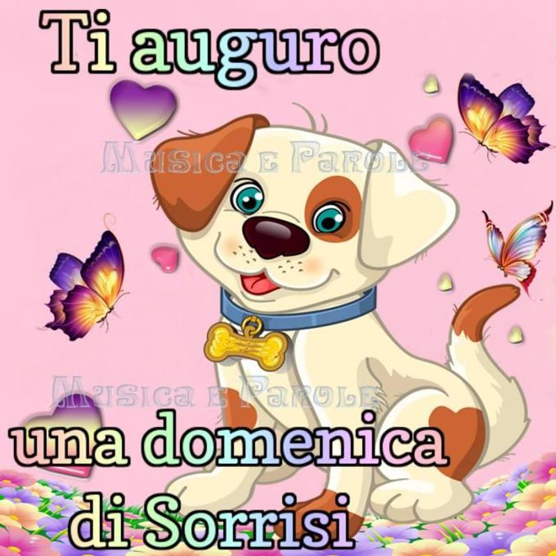 foto belle frasi facebook whatsapp buona domenica scarica gratis carine 50