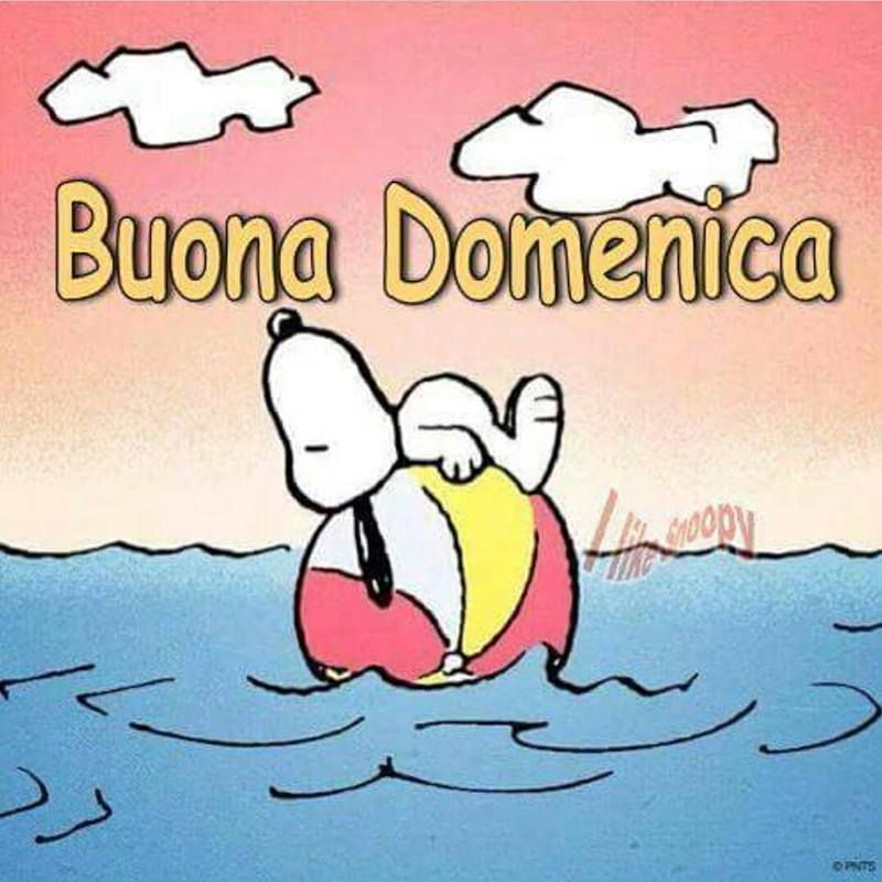 foto belle frasi facebook whatsapp buona domenica scarica gratis carine 68