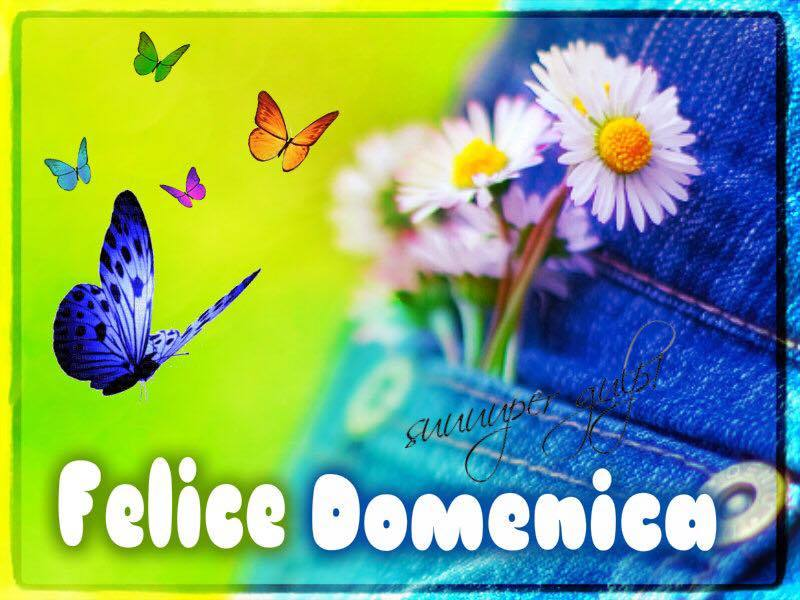 foto belle frasi facebook whatsapp buona domenica scarica gratis carine 75